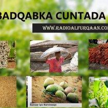 Dhagayso Barnaamijka Badqabka Cuntada (03).